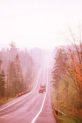 Even the fog won't make it curve