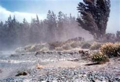 Wind blowing soil.