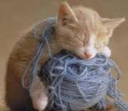 """WHEW!  THAT YARN PLAY TIRED ME OUT!"""