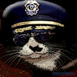 A uniform wearing cat? Yep, a special cat helped bust some pretty bad criminal types.