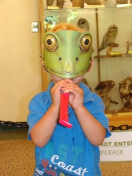 Froggy face craft.