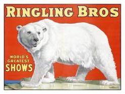 free cross stitch pattern Circus Bear