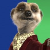 Jason Bassey profile image