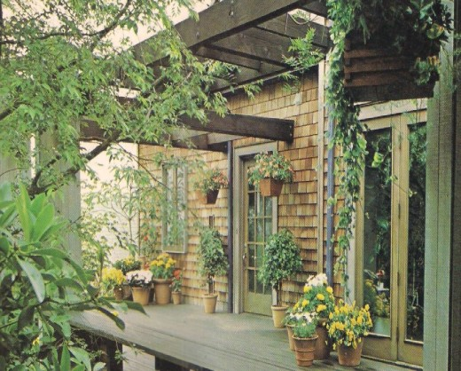 A Garden-like Patio