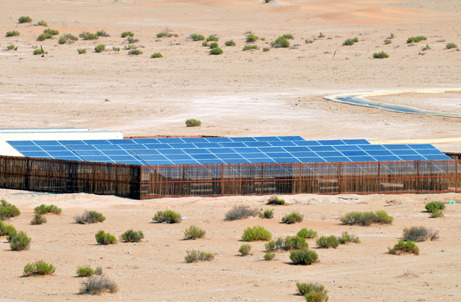 Abu Dhabis Environment Agency tests less environmentally friendly, zero-carbon process, less expensive solar energy desalination system