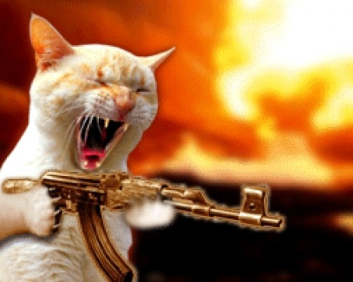 Machine Gun cat is shooting in your general direction. Blast em!