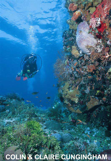 Alor the Heaven of Divers