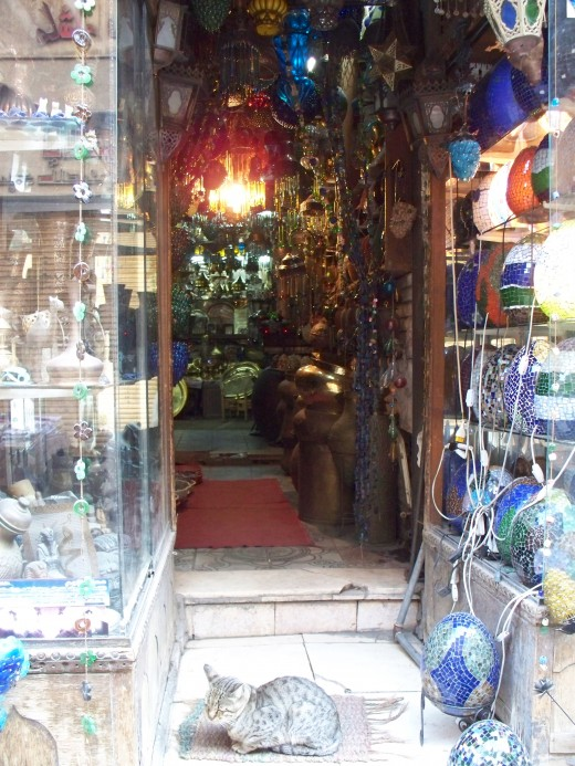 A cat guards the entrance to a lamp shop in Cairo, Egypt