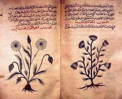 Arabic herbal medicine guide circa 1334.