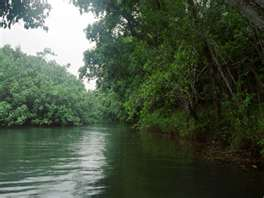 Wailua River - Boating Tours and Water Skiing