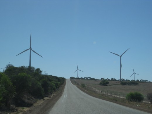 Visit the wind farm nearby