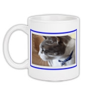 Mug available at Celebrating Cats