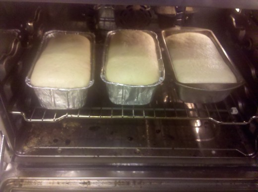 Bread has risen and is in the oven