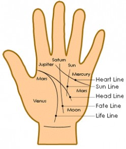 How To Interpret The Head Line On Your Palm