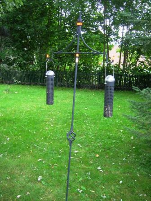 I have 4 feeders in backyard- Bob Ewing photo