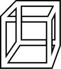 Which perspective of this optical illusion do you see?