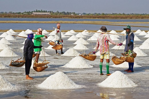 Sea salt harvesting in Pak Thale, Phetchaburi, Thailand, source Wikimedia Commons - How did salt and pepper become a pair?, by Rosie2010