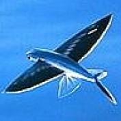 janderson99 profile image