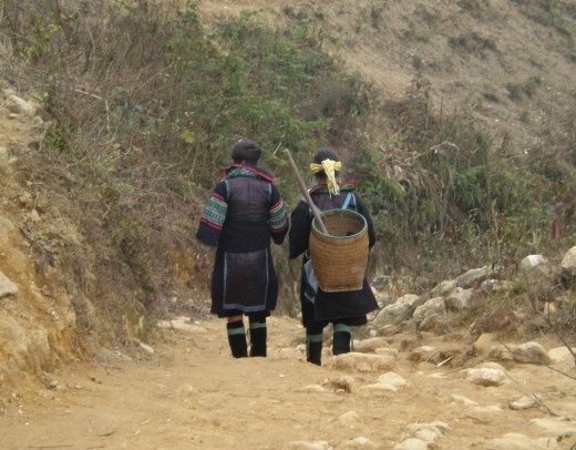 Hill Tribe Women walking through Hoang Lien Mountains, Vietnam.