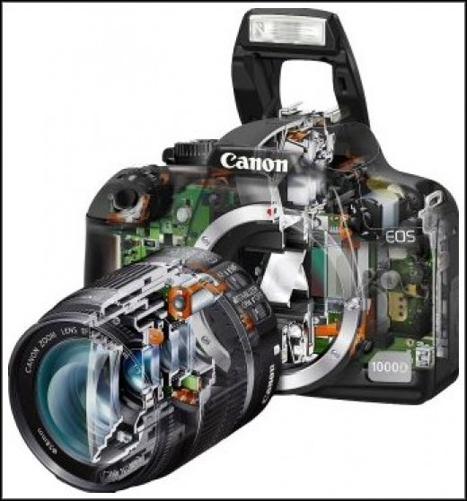 This is a cutaway view of the Canon Digital Rebel 1000D.