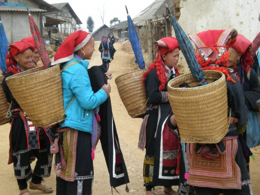 Hill Tribe Women in Traditional Attire, always prepared for the rain. Sapa, Vietnam.