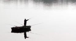 Using Red Wigglers or Eisenia Foetida as fishing bait