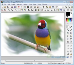 Top Free Digital Photo Editing Software