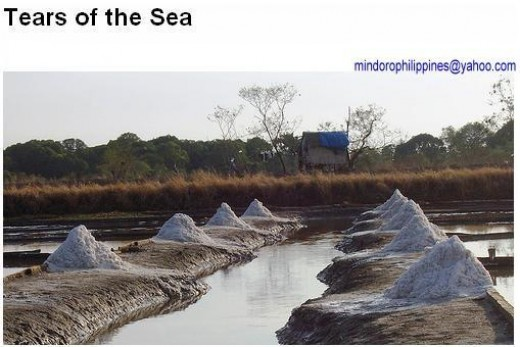 Mindoro Salt Beds....Southern Occidental Mindoro is a good producer of iodized salts.
