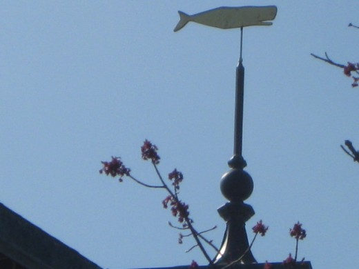 Weathervane on Whaling Museum