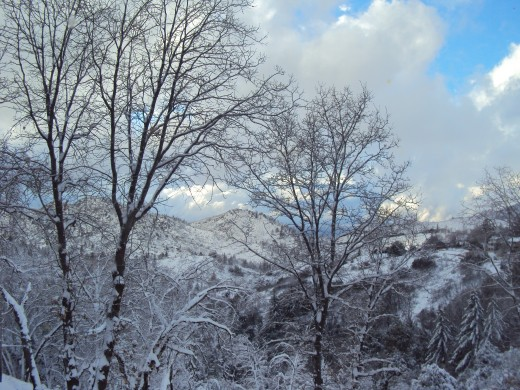 Another picture of The Pinnacles after the blizzard.