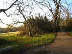 Streatham Common