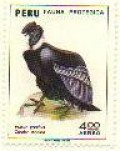Condor stamp from Peru. Picture - Birdtheme.org