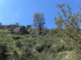 Looking up the canyon toward high peaks