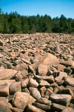 The boulder field, Hickory Run State Park.