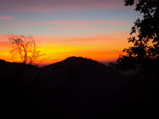 Streaks of orange in the sunset.