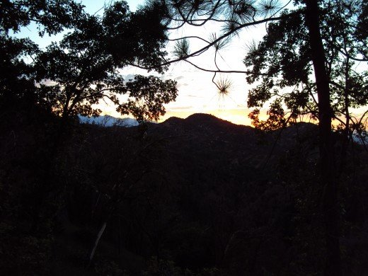 I like how the silhouette of the trees and the mountains make up most of this sunset photograph.