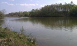 Wartrace Lake