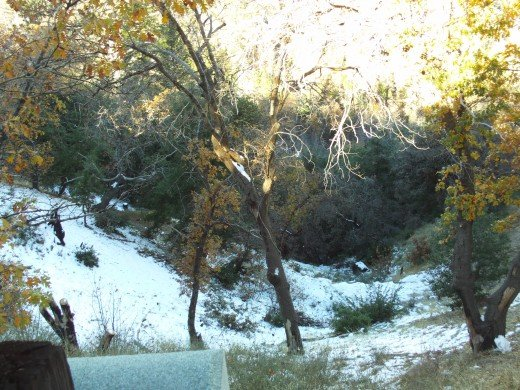 Looking down a hillside with snow that has not melted as of yet.