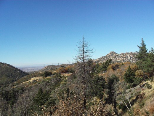 Another shot of The Pinnacles in the distance.  There are also a few dead trees in this picture.