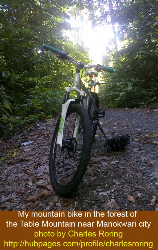 Mountain biking through the rainforest of the Table Mountain near Manokwari city - the capital of West Papua province in the Indonesia