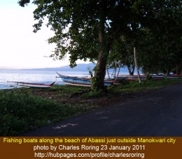 "One of the photographs that I shot while mountain biking, ""Fishing boats along the Abasi beach of Manokwari."""