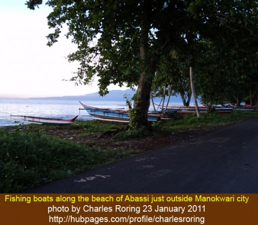 "One of the photographs that I shot while mountain biking, ""Fishing boats along the Abasi beach of Manokwari."""