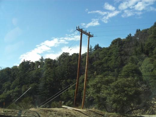 Telephone pole near the bottom of the 18.