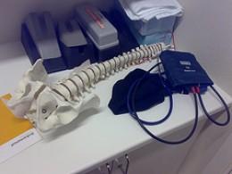 Model of human spine Photo credit: Elmindreda @flickr