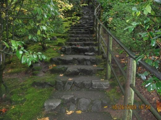 follow the Path ol Enlightment