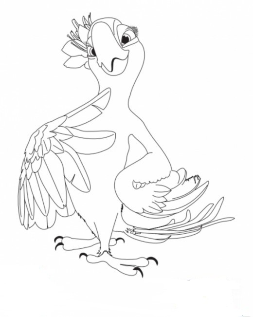 An error occurred  Rio Macaw Coloring Page