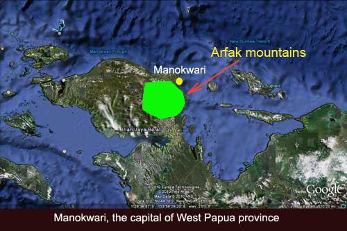 Arfak mountains on Google Earth map