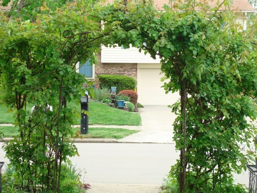 Privacy from the street is provide by placing this arbor at the walkway.