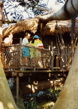 Tourists up in the recreated banyon treehouse.