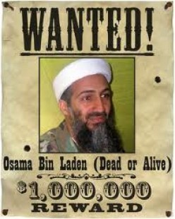 What does the Death of Osama Bin Laden Mean?